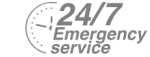 24/7 Emergency Service Pest Control in Swanscombe, Ebbsfleet, DA10. Call Now! 020 8166 9746