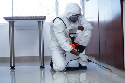 Emergency Pest Control, Pest Control in Swanscombe, Ebbsfleet, DA10. Call Now 020 8166 9746